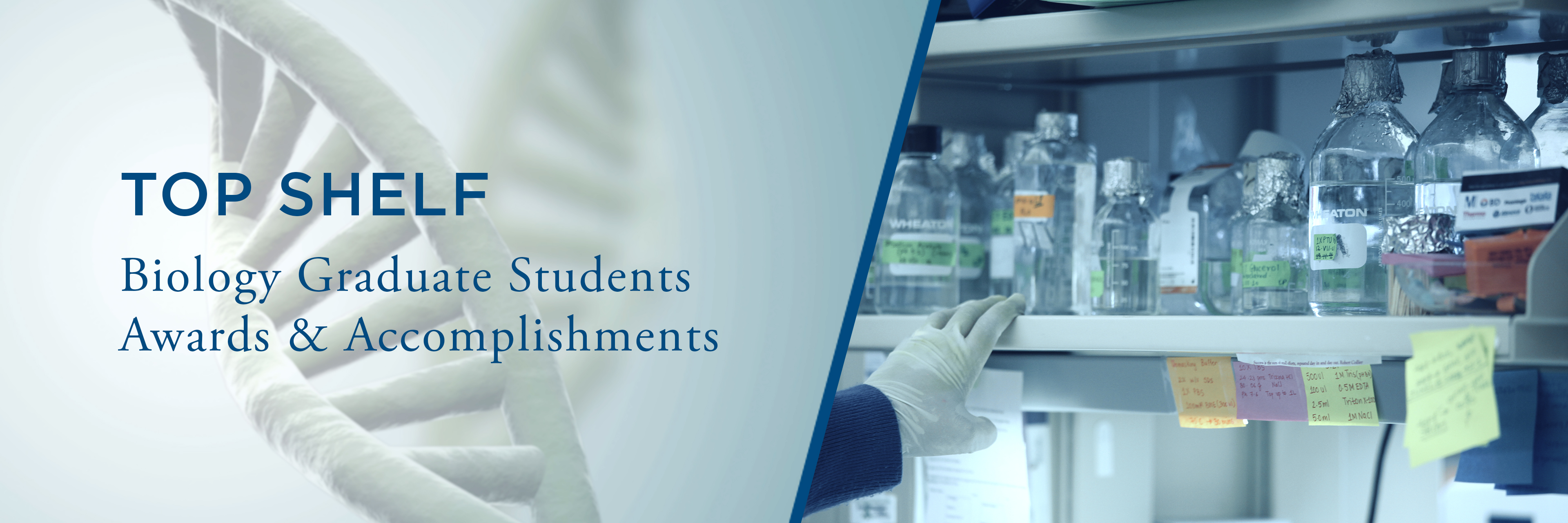 online thesis microbiology Writing a shakespeare essay phd thesis in environmental microbiology cv writing services perth writing dissertation steps.
