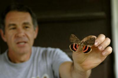 Biology professor Jim Krupa holds a butterfly.